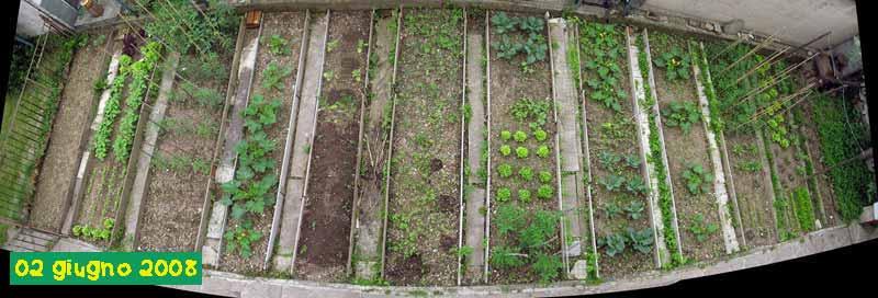 Orto for Sistema irrigazione a goccia